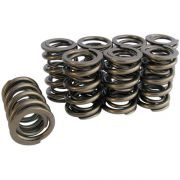 CB - VW650 Set Dual Valve Springs