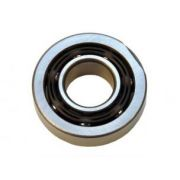 091 Main shaft bearing