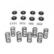 Spring Kit - HD Dual Retainer spring kit
