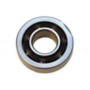 091 Main shaft bearing